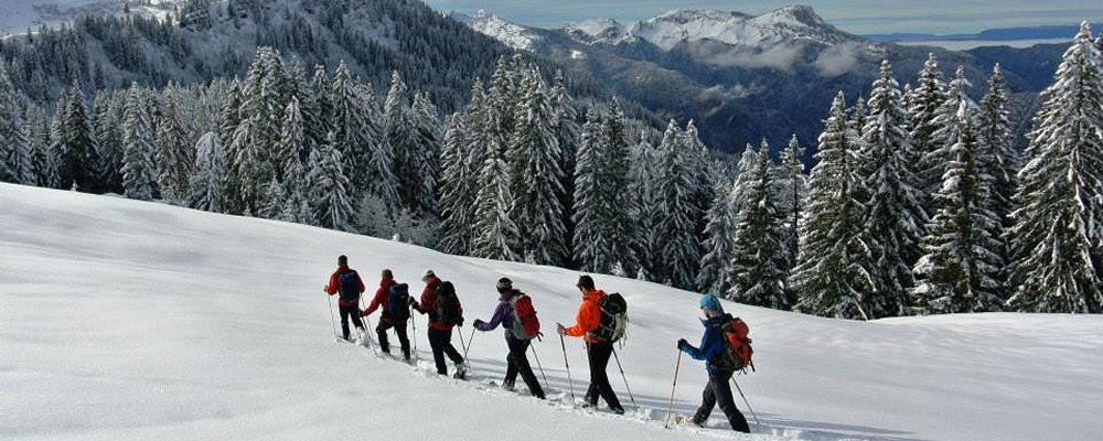 banner : snowshoeing in the pyrenees